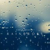 Raindrops de Chris Mercer