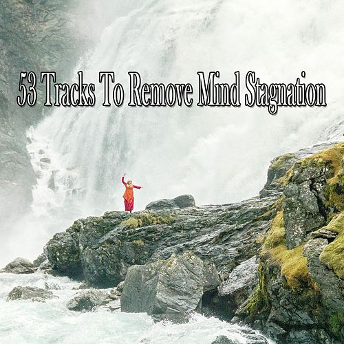 53 Tracks To Remove Mind Stagnation de Yoga Music