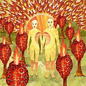 The Sunlandic Twins by Of Montreal