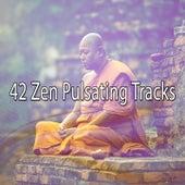 42 Zen Pulsating Tracks von Massage Therapy Music