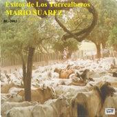 Sueño Llanero by Los Torrealberos