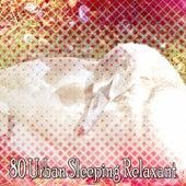 80 Urban Sleeping Relaxant de Sounds Of Nature