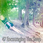 47 Encouraging The Sleep de White Noise Babies
