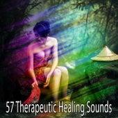 57 Therapeutic Healing Sounds de Meditación Música Ambiente