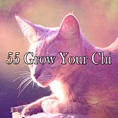 55 Grow Your Chi de Water Sound Natural White Noise