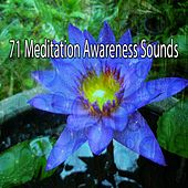 71 Meditation Awareness Sounds von Entspannungsmusik
