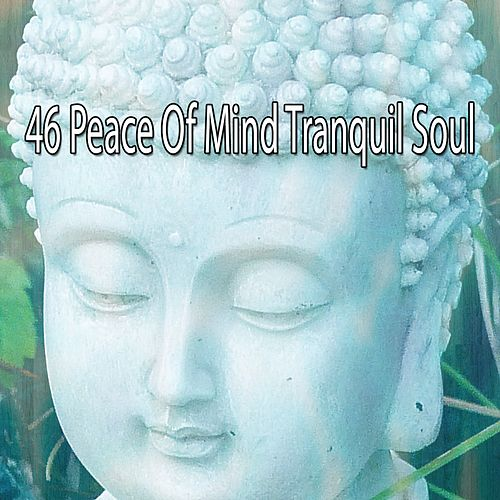 46 Peace Of Mind Tranquil Soul by Classical Study Music (1)