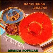 Rancheras Bravas de Various Artists