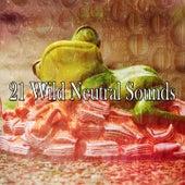 21 Wild Neutral Sounds de Thunderstorm Sleep