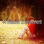 44 Relaxed Environment de Sleepicious