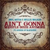 I Ain't Going to Whistle Dixie Anymore Folk Blues (Folk Blues) by Paul Metsa