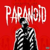 Paranoid de Gorilla Zoe