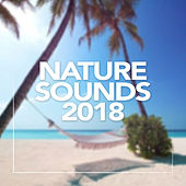 Nature Sounds 2018 - EP by Nature Sounds (1)