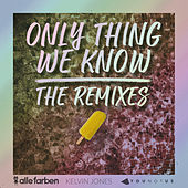 Only Thing We Know - The Remixes di Alle Farben