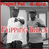 Flipping Bales de Project Pat