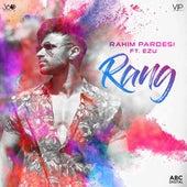 Rang by Rahim Pardesi