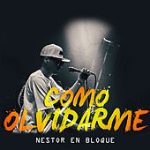 Como Olvidarme de Nestor en Bloque