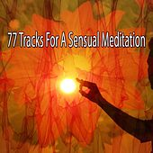 77 Tracks For A Sensual Meditation by Yoga Workout Music (1)