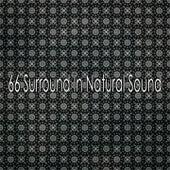 66 Surround In Natural Sound von Massage Therapy Music