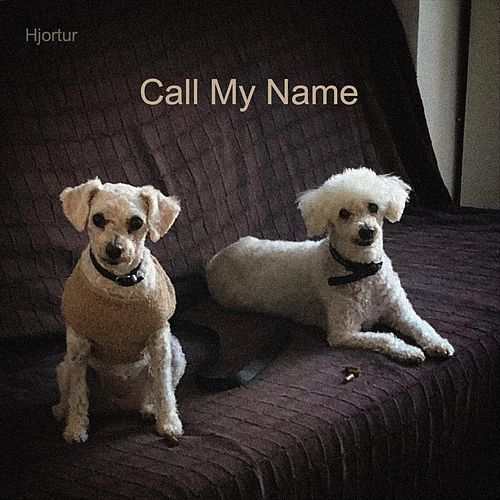 Call My Name by Hjortur