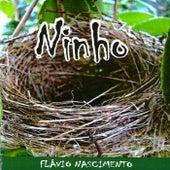 Ninho de Flávio Nascimento