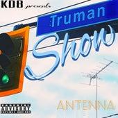 Antenna by K.D.B.