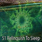 51 Relinquish To Sleep by Relaxing Spa Music