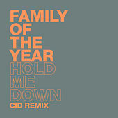 Hold Me Down (CID Remix) von Family of the Year