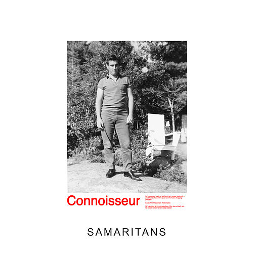 Samaritans by Idles