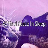 42 Find Peace In Sleep by Lullaby Land
