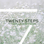 Twenty Steps to Mindfulness Meditation de Various Artists
