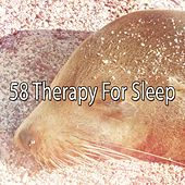 58 Therapy For Sleep de Sounds Of Nature