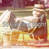 56 Calming Night de Sleepicious