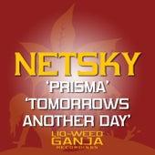 Prisma / Tomorrow's Another Day von Netsky