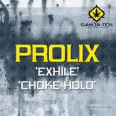 Exhile / Choke Hold by Prolix