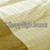57 Sleepy Night Sounds de White Noise Babies