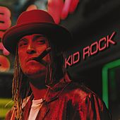 Devil Without A Cause by Kid Rock