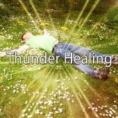 Thunder Healing de Thunderstorm Sleep