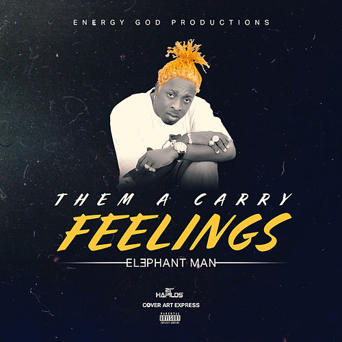 Them a Carry Feelings by Elephant Man