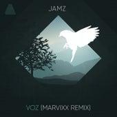 Voz (Marvixx Remix) by Jamz