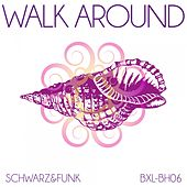 Walk Around by Schwarz and Funk