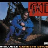 Apache Ain't Shit de Apache