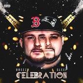 Celebration by Breezy