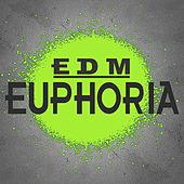 EDM Euphoria (The Best EDM, Trap & Dirty House Mix) by Various Artists