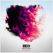 Beautiful Now (Extended Mix) by Zedd