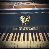 Piano Man de For Balter!