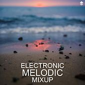 Electronic Melodic Mixup by Various Artists