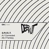 Connected / Fantasy by Spirit