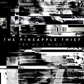 Try as I Might by The Pineapple Thief