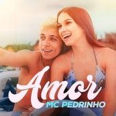 Amor by Mc Pedrinho